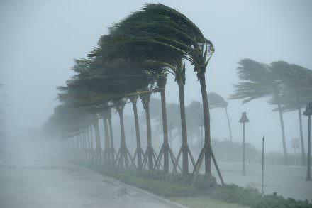 Florida Tax Holiday on Hurricane Supplies Begins Friday